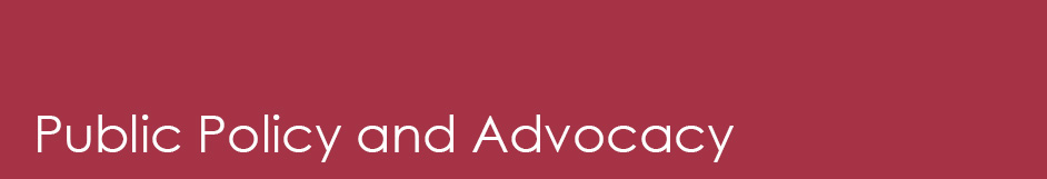 public policy and advocacy section heading