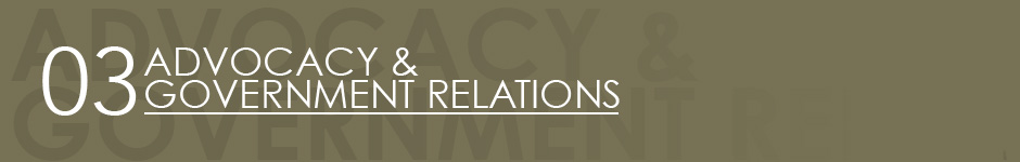 header - advocacy and government relations