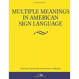 multiplemeanings small