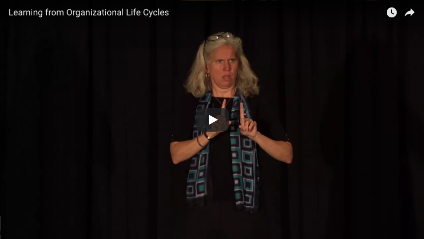 Organizational Life Cycles