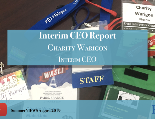 Interim CEO Report 2019 August VIEWS